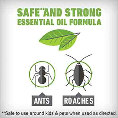 Ortho® Home Defense® Ant & Roach Killer with Essential Oils