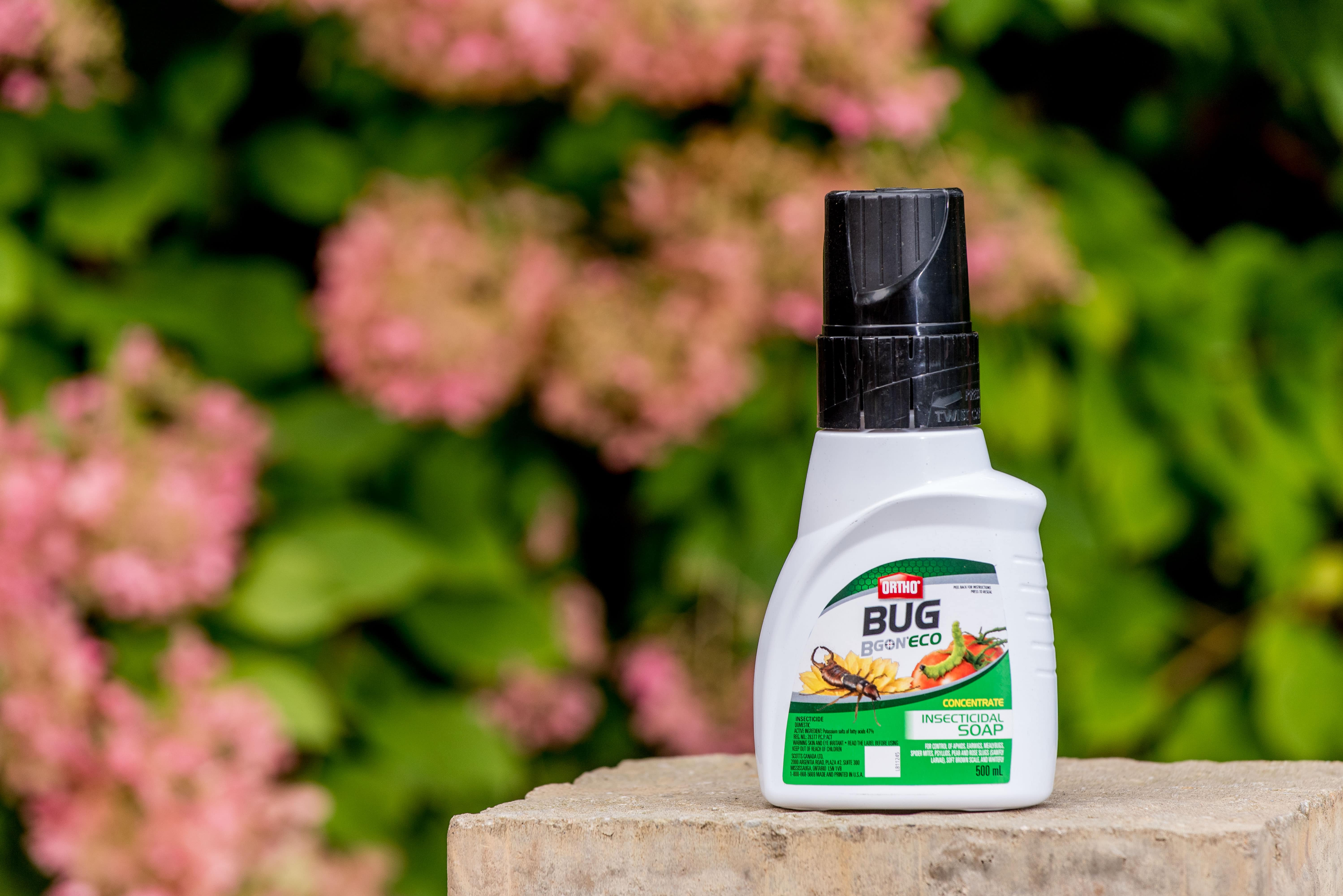 Ortho® Bug B Gon® ECO Insecticidal Soap Concentrate | Ortho