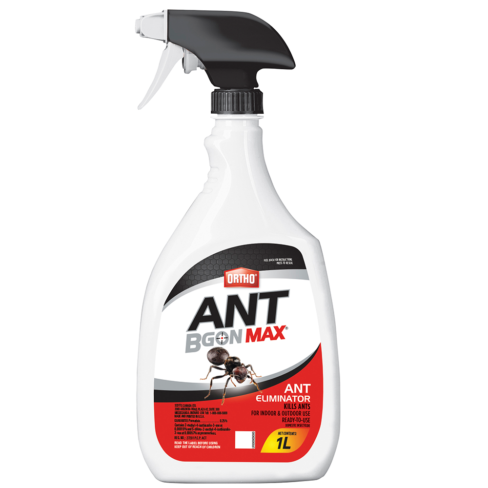 Ortho Home Defense Max Ant Eliminator Ready To Use Spray Insect