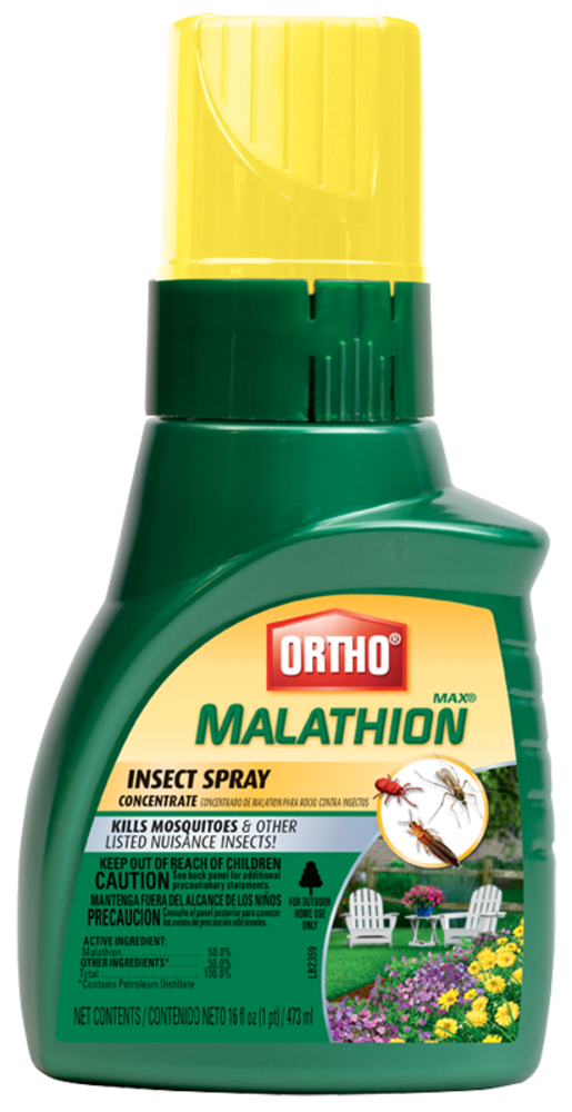 Ortho® MAX® Malathion Insect Spray Concentrate