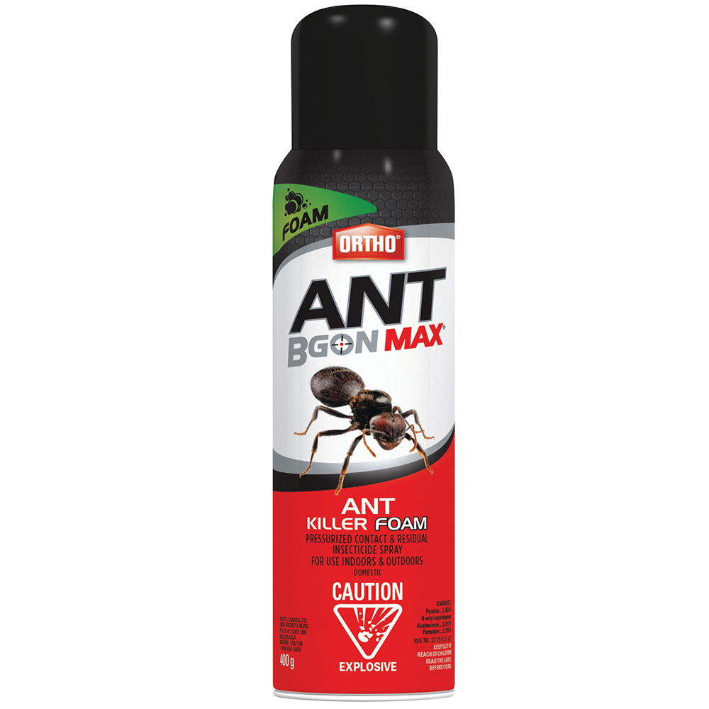 How To Kill Ants In Kitchen Cabinets: Ant B Gon Max Ant Killer Foam