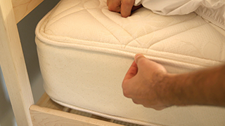 How To Prevent Bed Bugs Indoor Pests Ortho