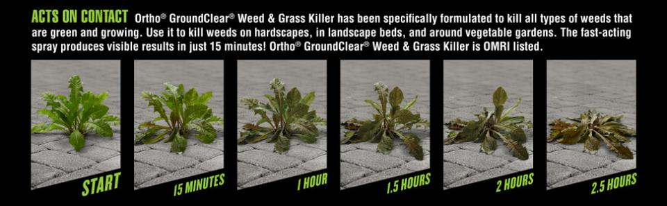 Ortho® Groundclear® Weed & Grass Killer Ready-to-Use