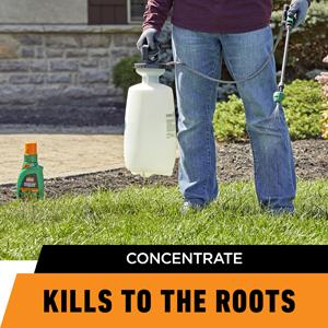 Ortho® WeedClear™ Lawn Weed Killer Concentrate