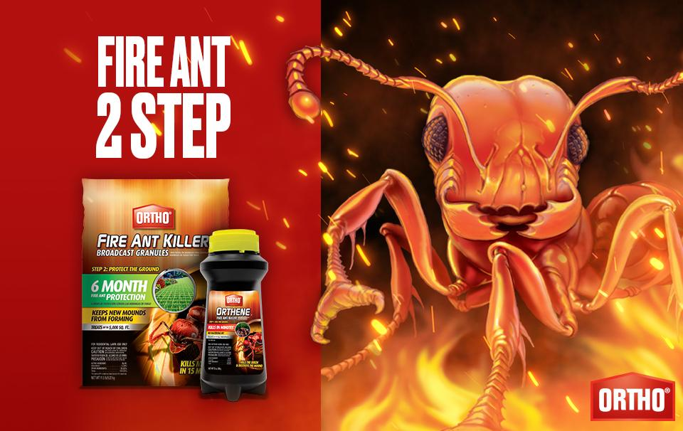 Fire Ant 2-Step