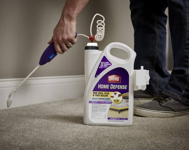 User spraying the product along baseboards