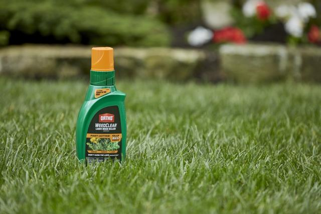 Ortho WeedClear Weed Killer Concentrate on Ground