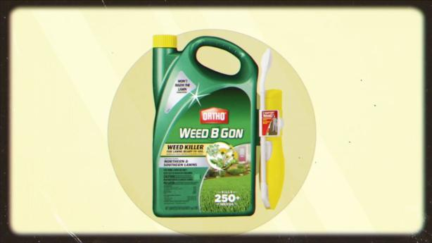 Ortho Weed B Gon Weed Killer For Lawns Concentrate - Weed Control ...