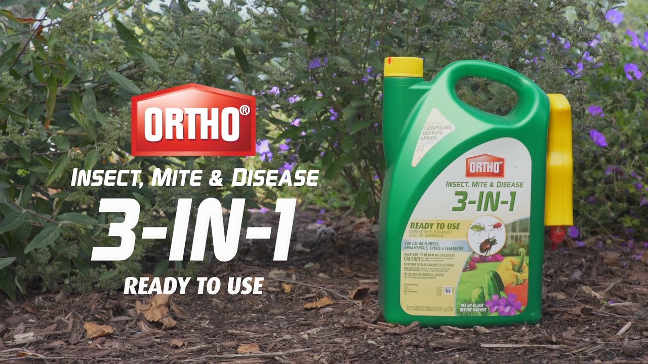 Ortho Insect Mite and Disease 3-in-1