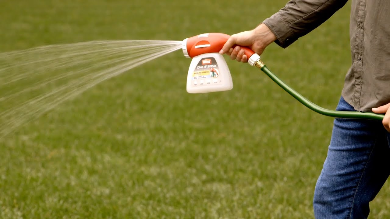 How To Ly Weed Bug And Pest Control With Ortho Dial N Spray